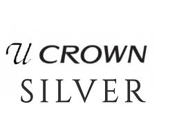 Инвертор U-crown Silver (до -30°С)